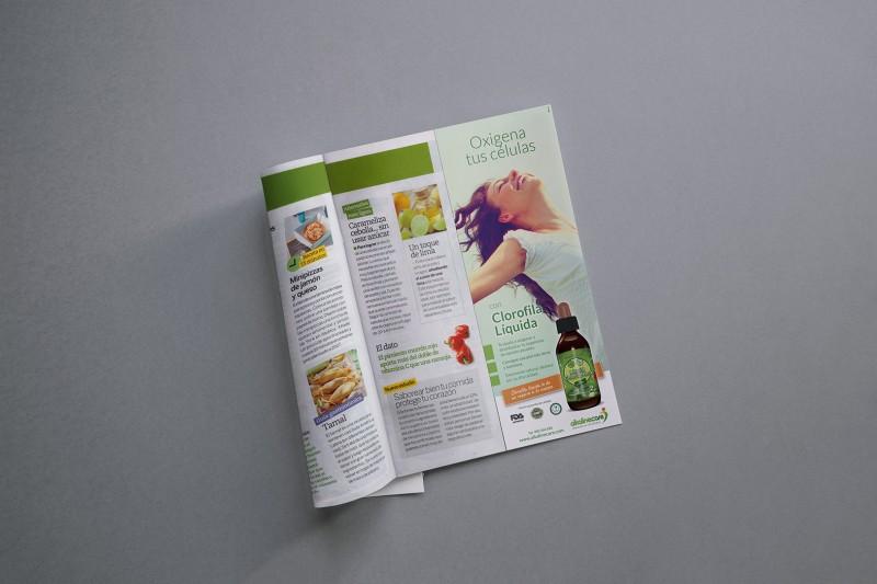 Magazine CLOROFILA 800x533 - NUEVA CREATIVIDAD PARA ALKALINE CARE